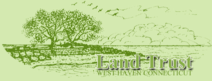 The Land Trust of West Haven Connecticut